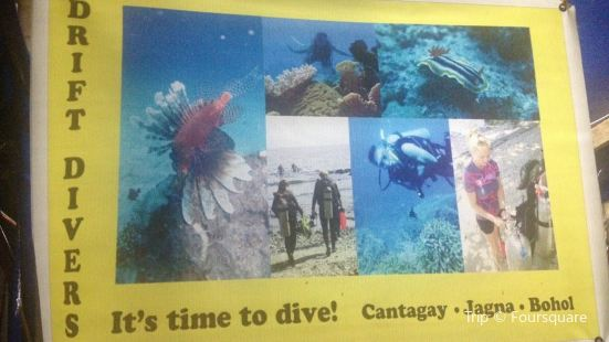 Drift Divers