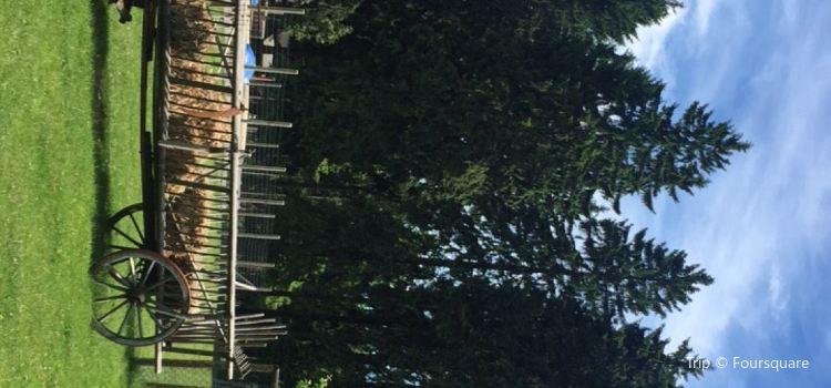 Wildpark Waldhaus Mehlmeisel2