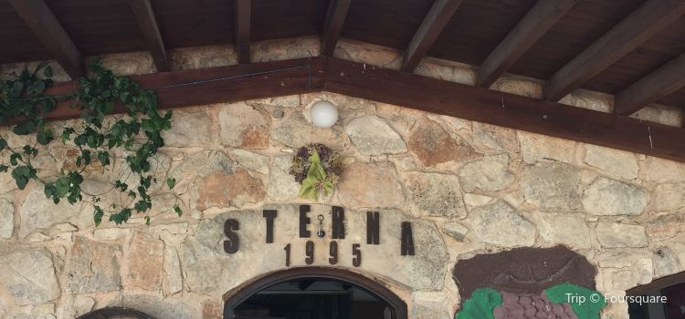 Sterna Winery2