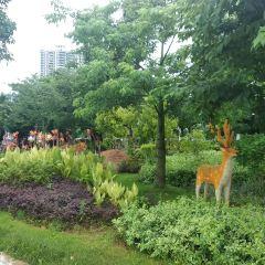Shaoguan Zhongshan Park User Photo