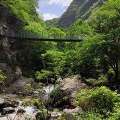 Qinling National Botanical Garden User Photo