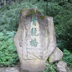 青龍橋用戶圖片