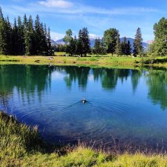 Cascade Ponds User Photo