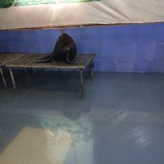 天山野生動物園のユーザー投稿写真