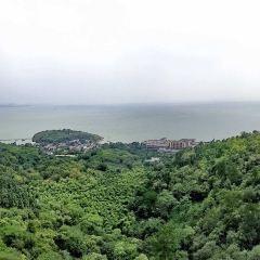 姥山島用戶圖片