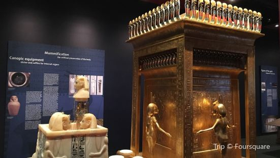 The Discovery of King Tut