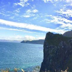 羅蕾萊山崖用戶圖片