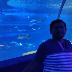 Grandview Aquarium User Photo