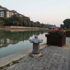 Dongguan Gudu User Photo