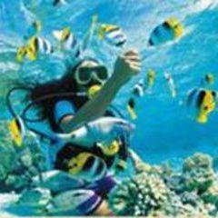 Underwater World Pattaya User Photo