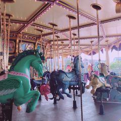 幻想曲旋轉木馬用戶圖片