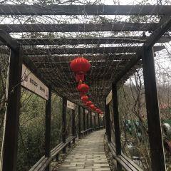 子午道(饒峰驛站)用戶圖片