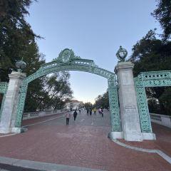 캘리포니아 대학교 여행 사진