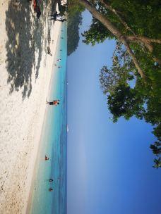 洛克岛-可可卡丹-M31****947