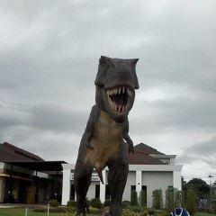 Andaman Museum User Photo