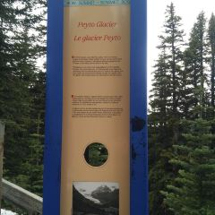 Peyto Lake User Photo