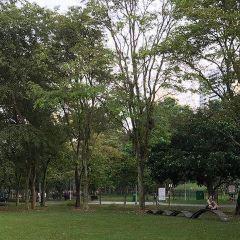 Bishan Ang Mo Kio Park User Photo