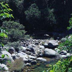 혼바자연보호구역 여행 사진