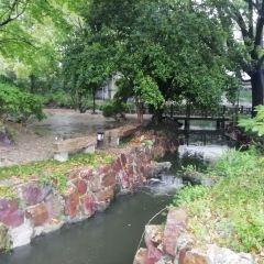 樂蔭園用戶圖片