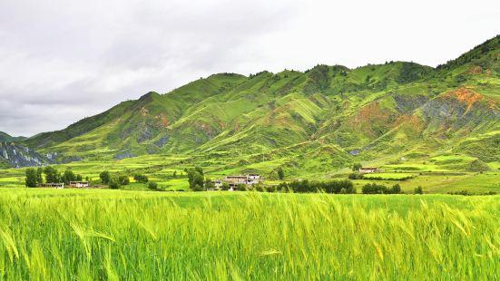 Bameizhen