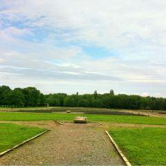 Buchenwald User Photo