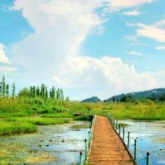 Xihua Wetland Park User Photo