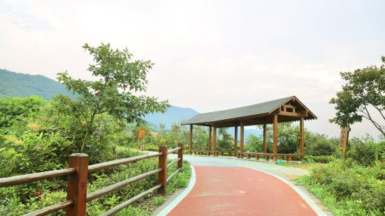 Longchishan Bicycle Park