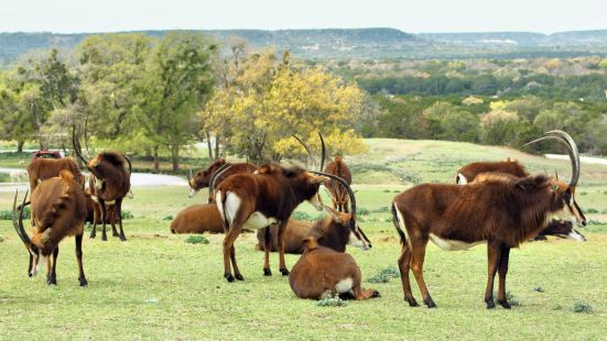 Fossil Rim Wildlife Center