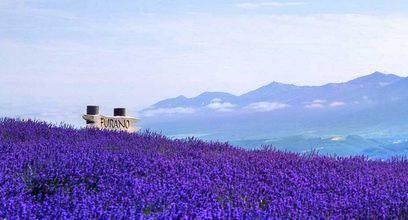 Longji Mountain