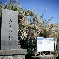 青島用戶圖片