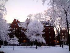 哈佛大学-剑桥-linglizi