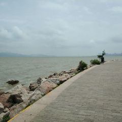 Shenzhen Bay Park User Photo