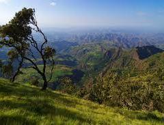 Gondar User Photo