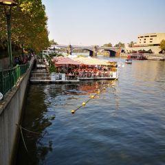 雅拉河用戶圖片