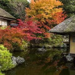 Seiryuji Temple User Photo