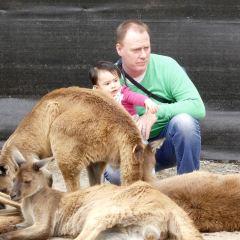 巴拉瑞特野生動物園用戶圖片