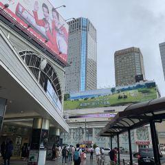 시나가와 여행 사진