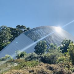 Adelaide Botanic Garden User Photo