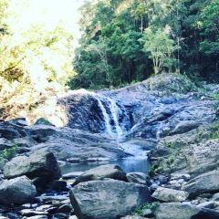 Conondale National Park User Photo