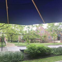 Penn State University User Photo