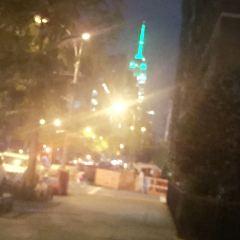 New York University User Photo
