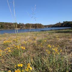 Lake Catherine State Park用戶圖片