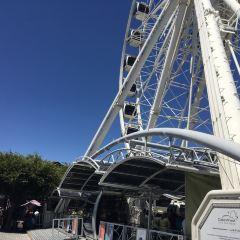 維多利亞阿爾弗雷德碼頭廣場用戶圖片