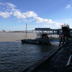 The Mississippi River User Photo