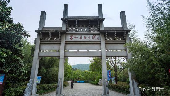 蜀山森林公園