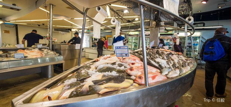 Auckland Fish Market1