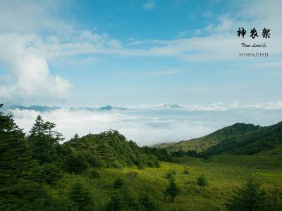 神農架國際生態旅遊區