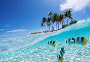 來了就不想走的4個島嶼,熱浪島跳島遊指南!
