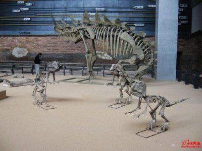 朝陽市古生物化石博物館