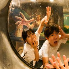 박물관은살아있다 인사동점 여행 사진